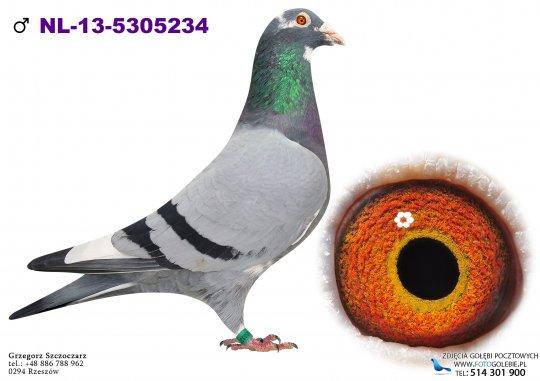 NL-13-5305234